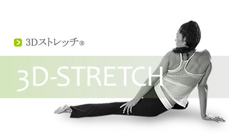 3Dストレッチ(3D STRETCH)