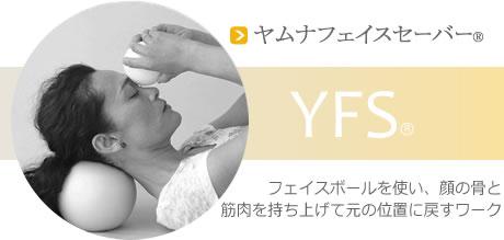 YFS(ヤムナフェイスセーバー)
